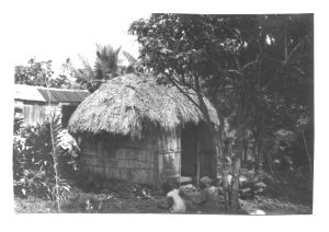 Myuwell's house
