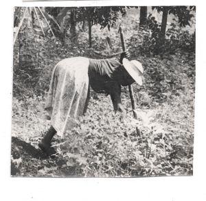 Myuwell  in her garden